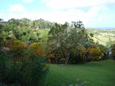 Parc botanique du Marin