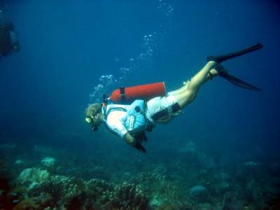 Faire de la plongée à Bequia