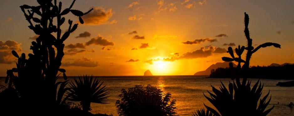 Quoi faire en Martinique ?